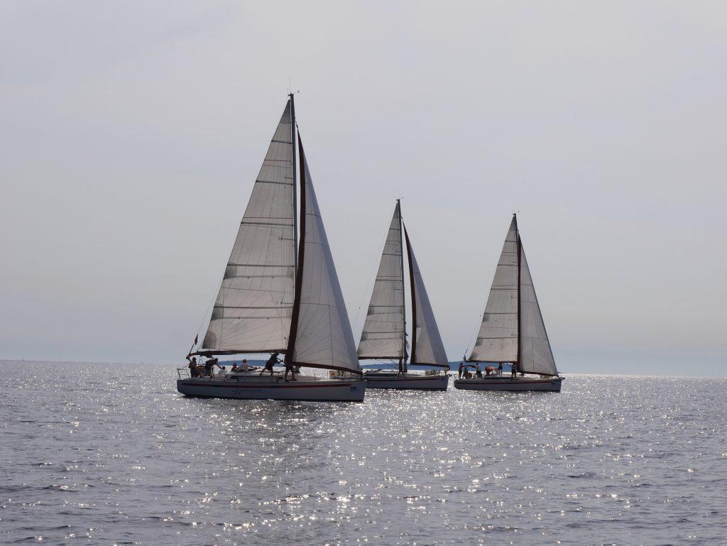 Bild von Segelbooten